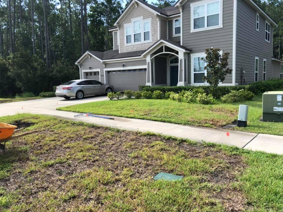 dead grass removal